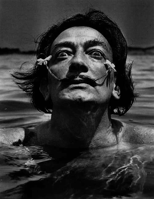 a biography and life work of salvador dali a spanish painter (figueres, girona, 1904 - púbol, 1989) spanish painter salvador dali was born in one morning in the spring of 1904 in a bourgeois family, son of a notary well-intended and a sensitive lady fond of birds would later write: to the three years wanted to be a chef the five i wanted to be napoleon.